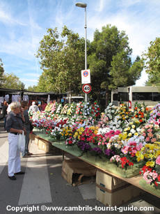 Flowers at Cambril's Market